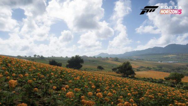Forza Horizon 5 Photo 4 600x338