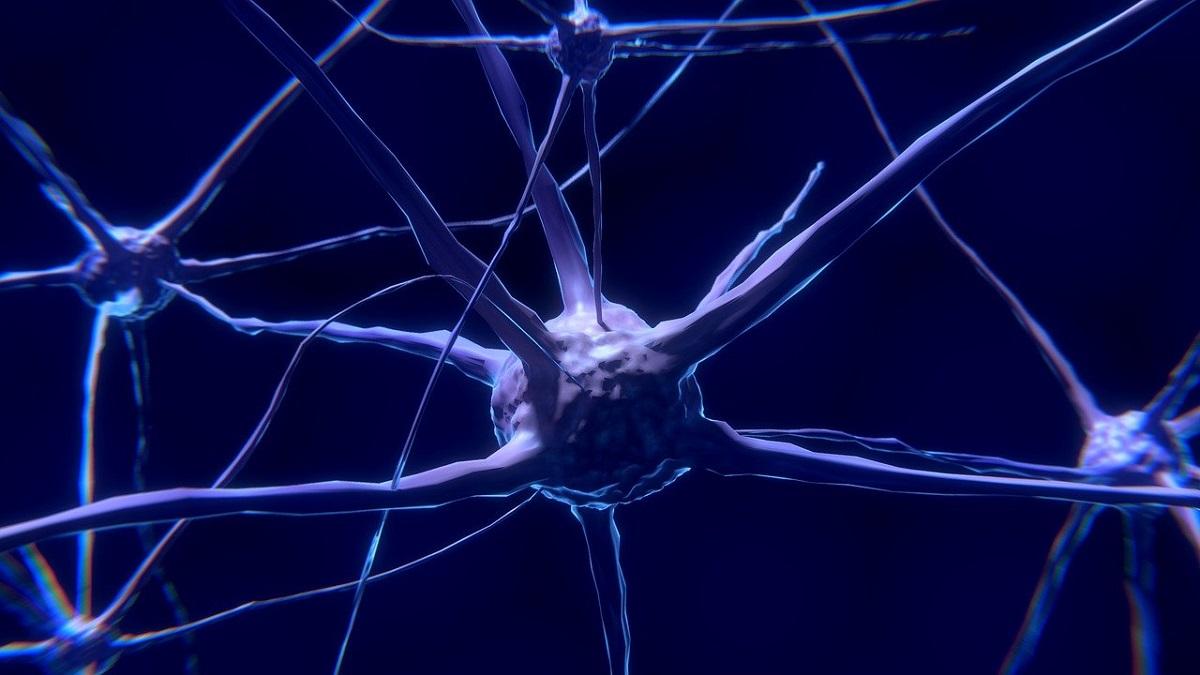 Un implant cérébral permet à un homme paralysé de parler à nouveau