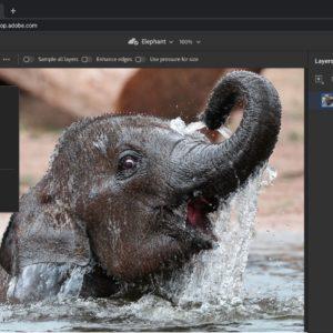 Image article Adobe dévoile des versions Web de Photoshop et Illustrator